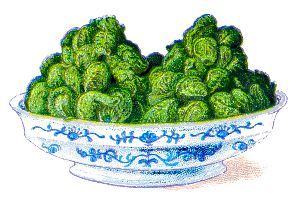 serving bowl brussels sprouts image
