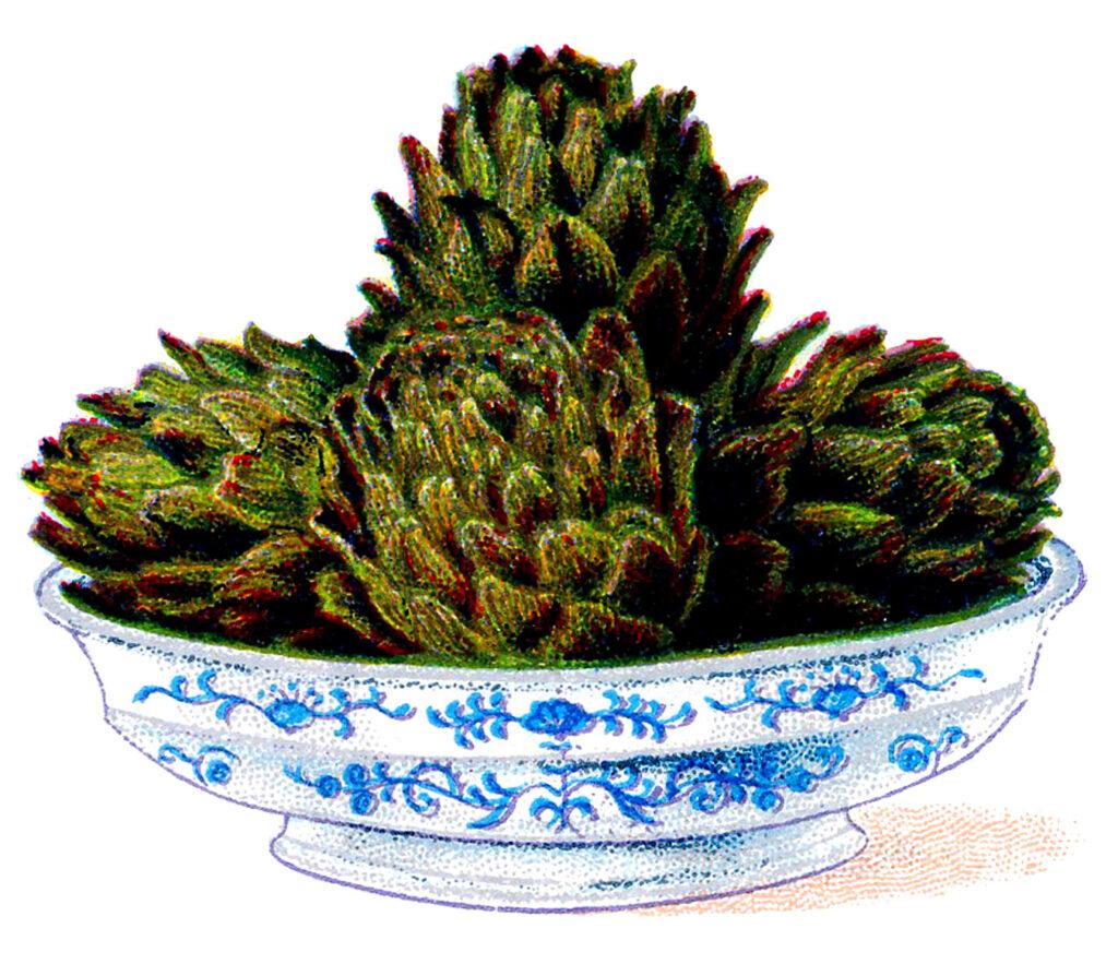 vintage bowl artichokes illustration