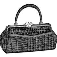 alligator purse illustration