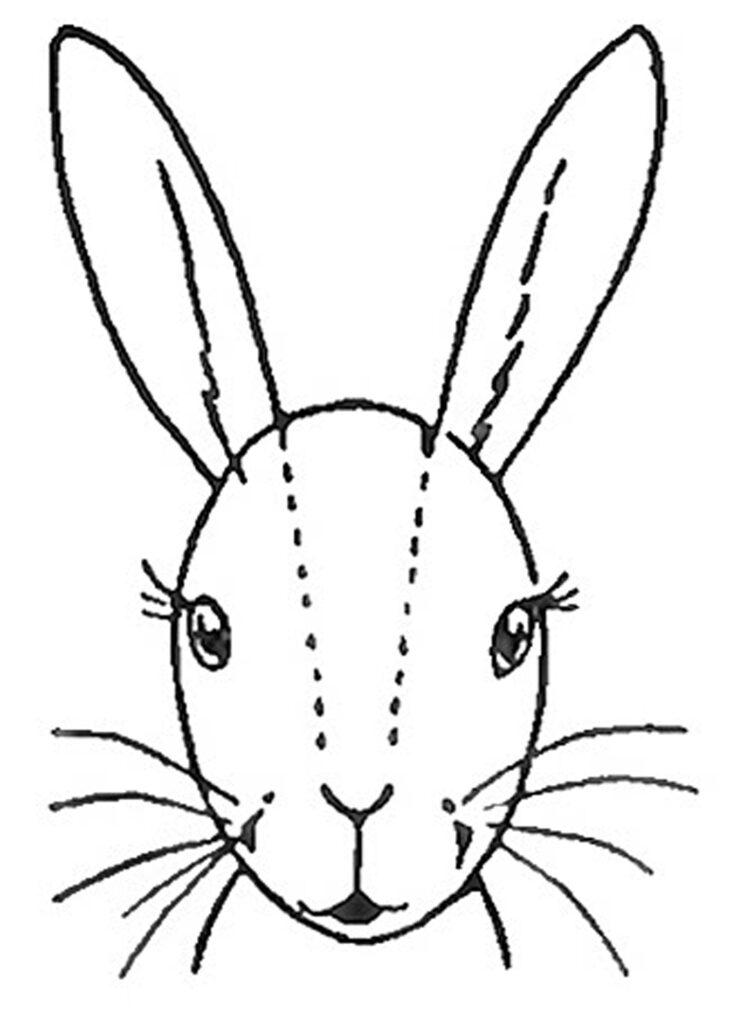 bunny face illustration