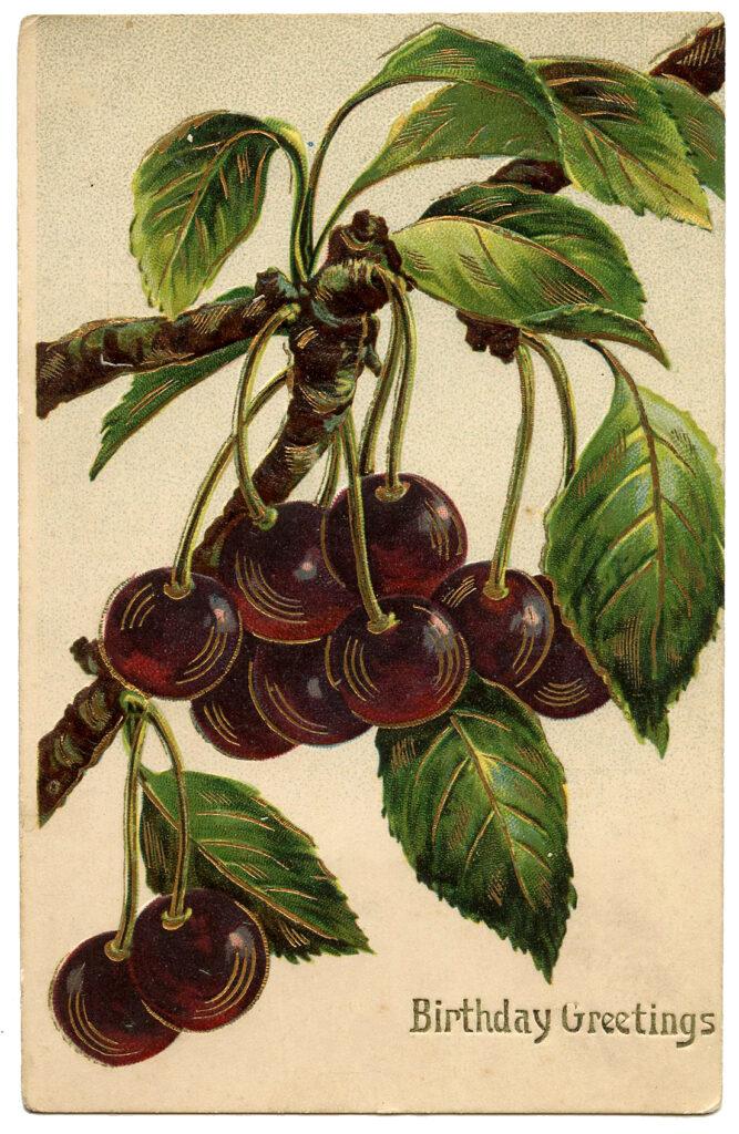 Black Cherries Fruit Birthday Image