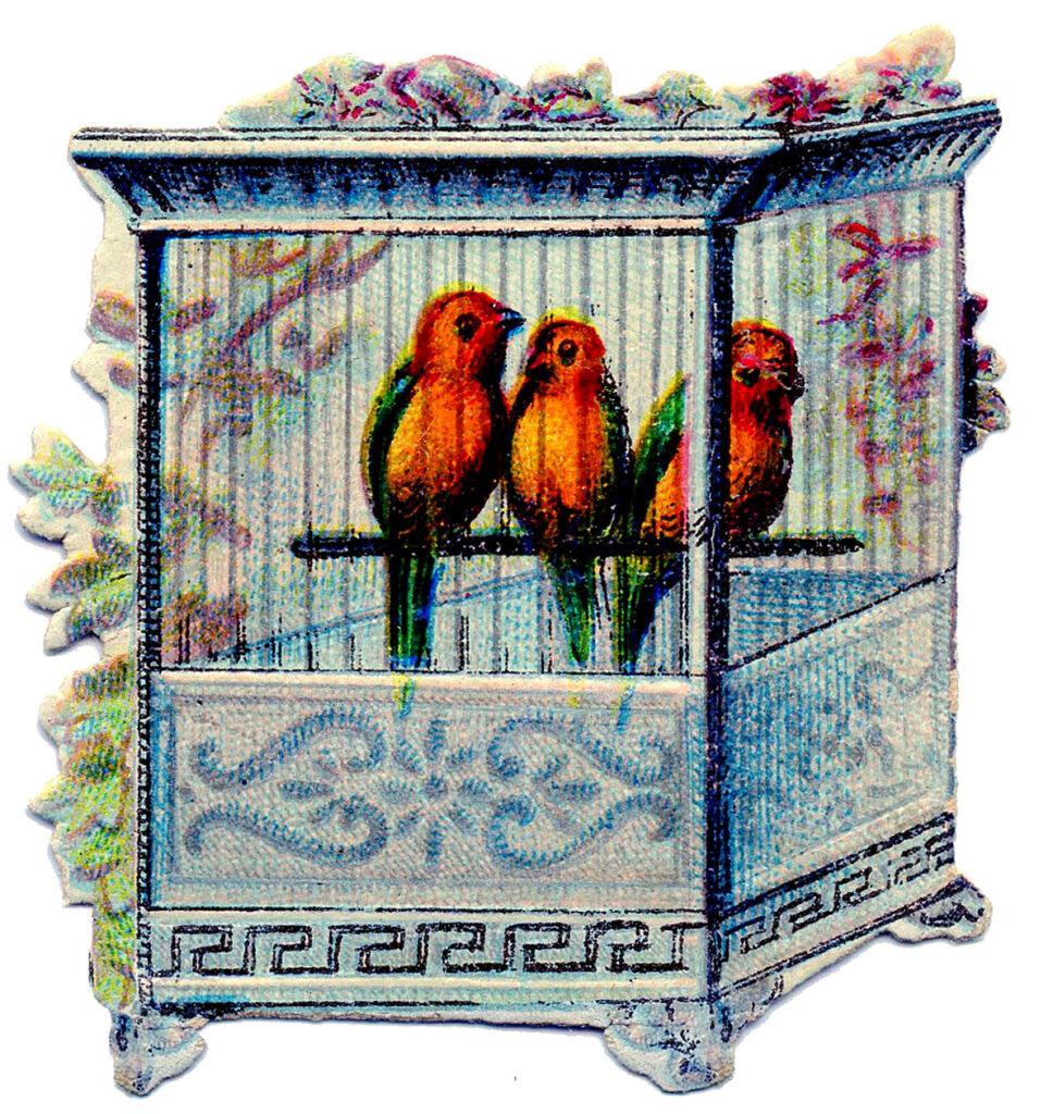 orange birds blue birdcage clipart