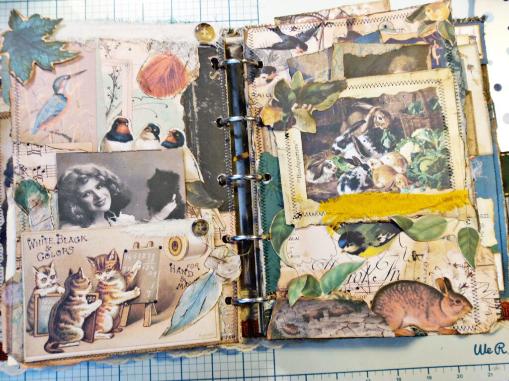 cats bunnies journal pag