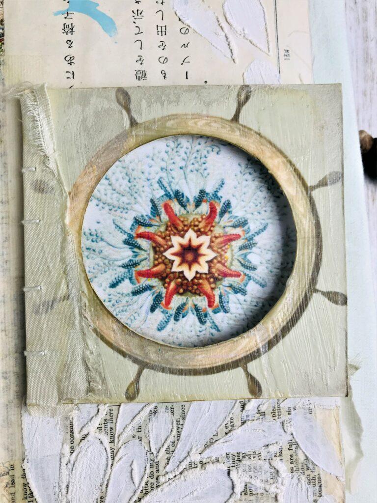 jellyfish porthole image