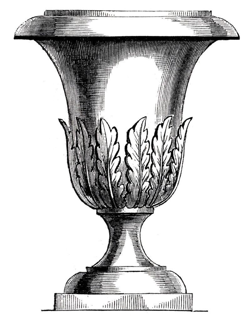 tall urn leaves illustration