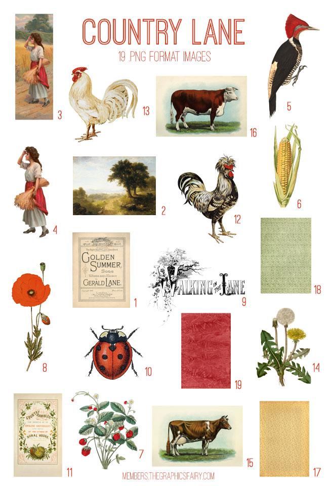 vintage country lane ephemera digital image bundle