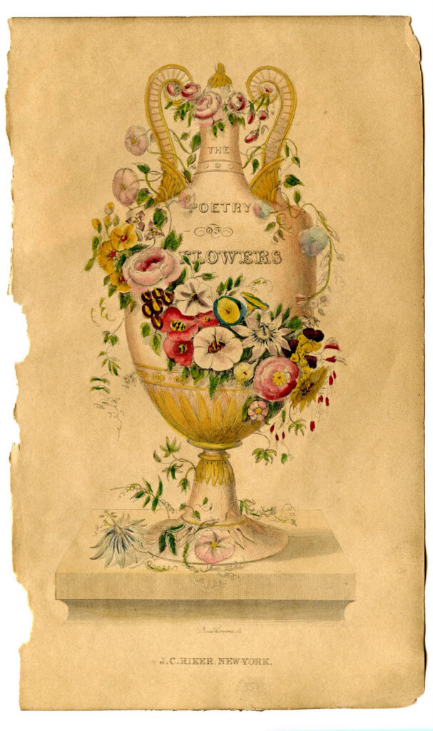 sepia poetry of flowers urn clipart