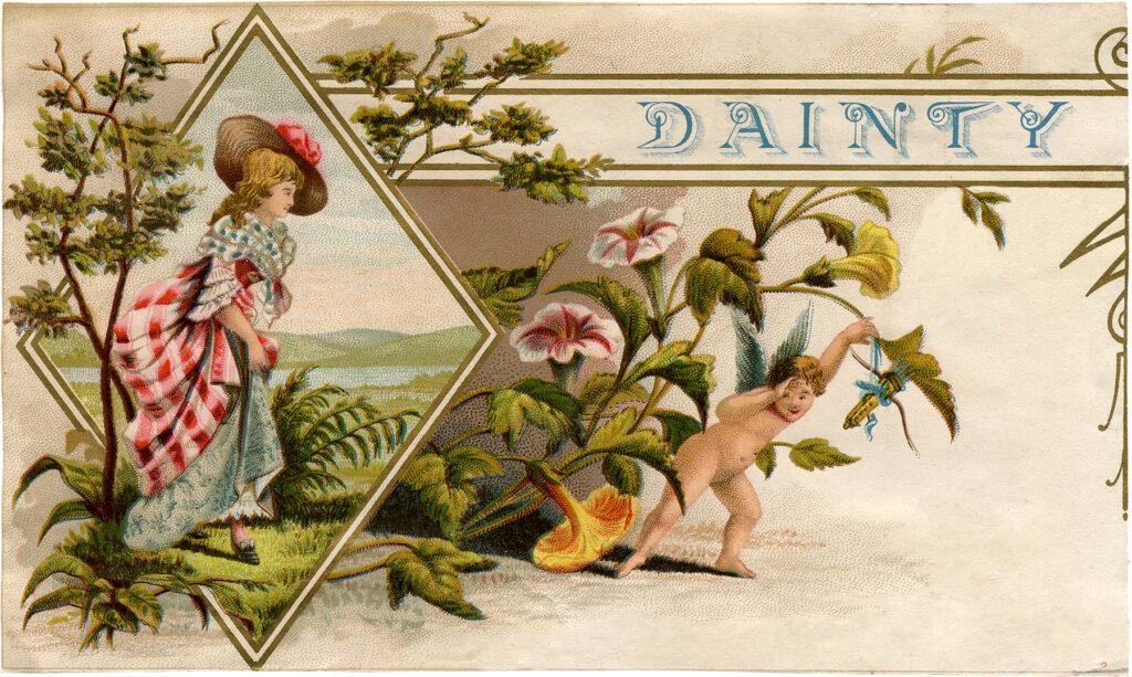 vintage dainty cigar box label lady flowers image