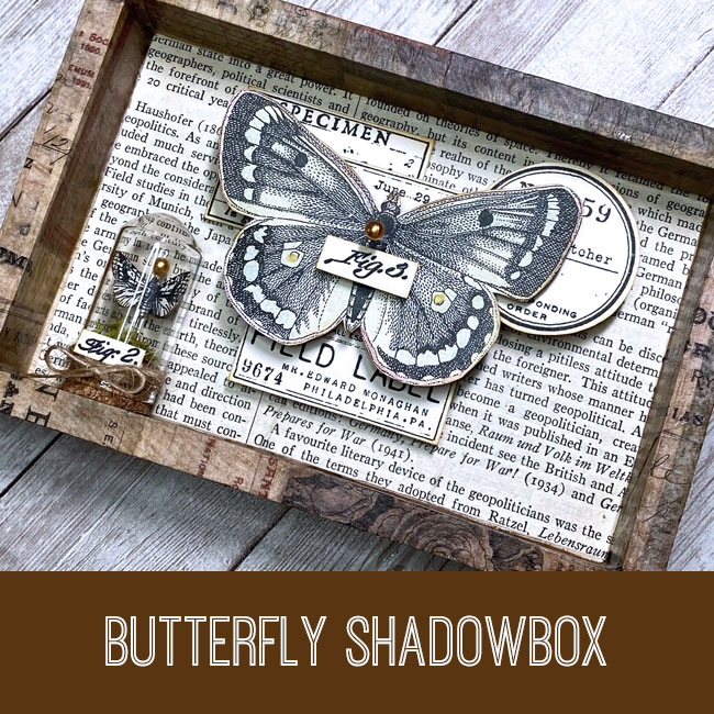 butterfly shadowbox tutorial