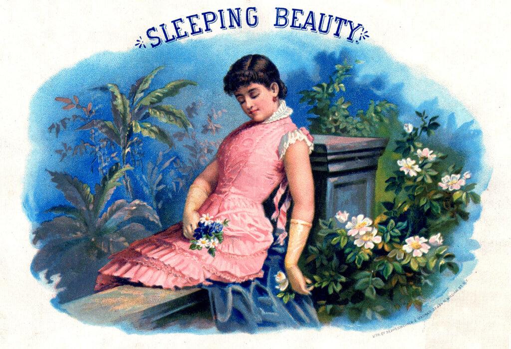 sleeping beauty vintage sleeping woman illustration