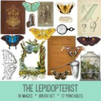 vintage The Lepidopterist ephemera bundle
