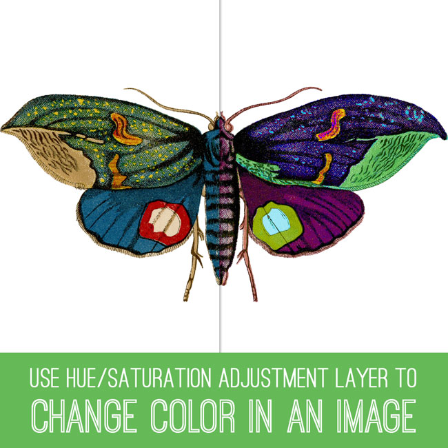 PSE Tutorial Change Color in an Image