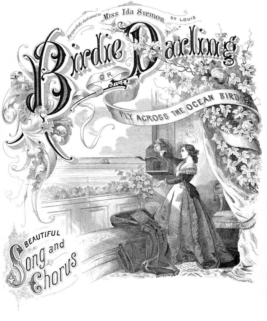 Birdie Darling vintage black white illustration