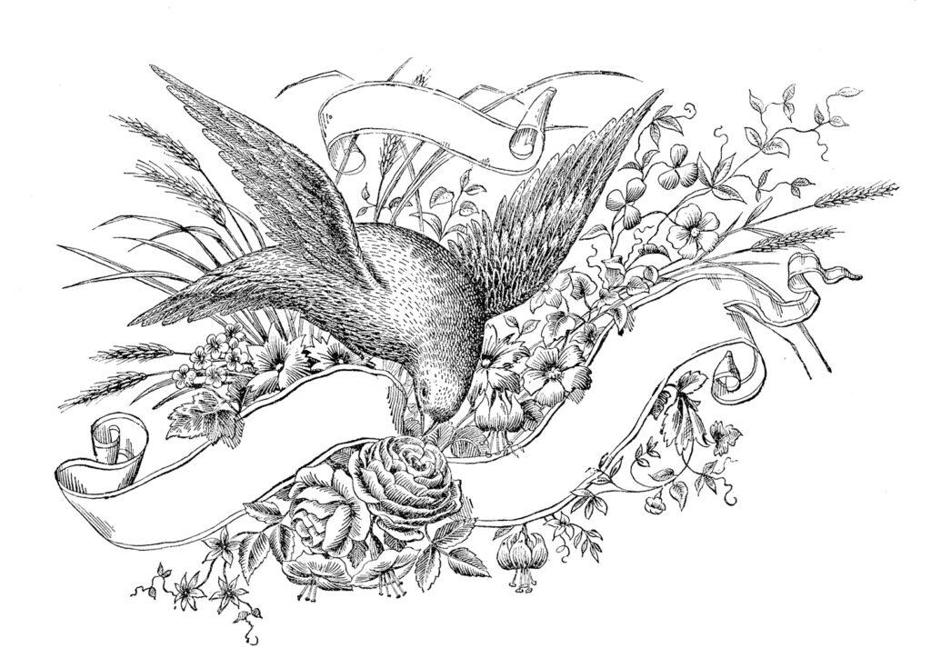 Spencerian bird ribbon label image