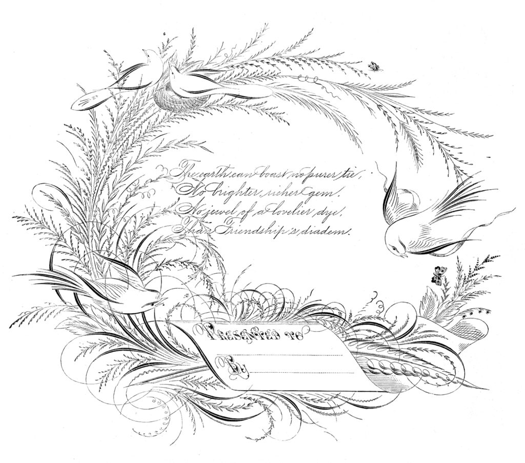 calligraphy Spencerian bird image