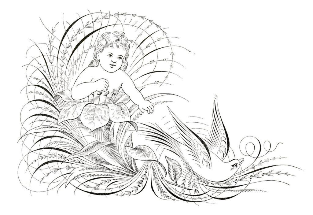 cherub baby bird calligraphy illustration