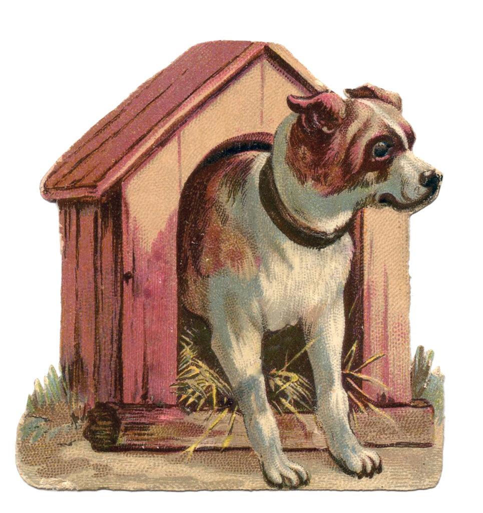 vintage pink dog house illustration