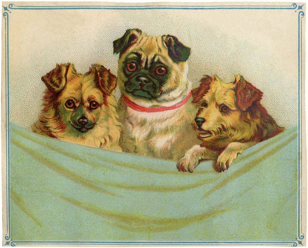 vintage puppies blanket clipart