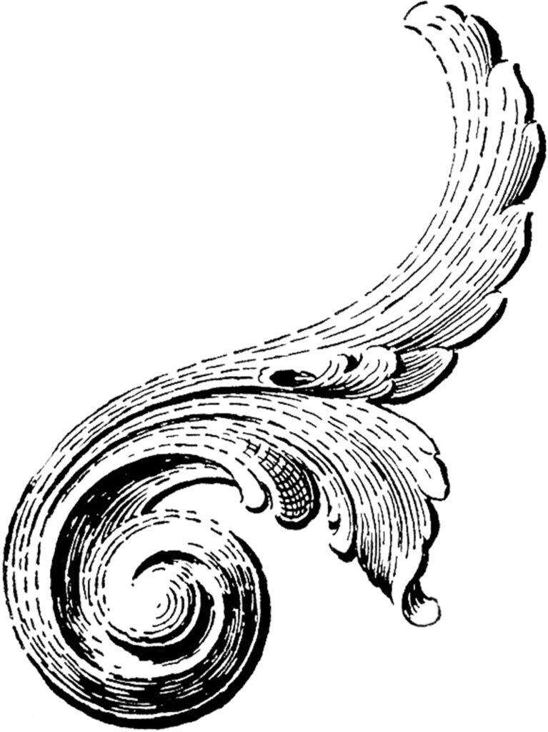 vintage scroll ornament image