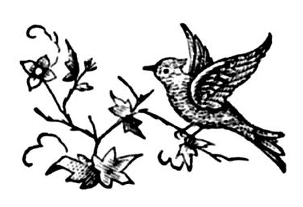 bird printer ornament illustration