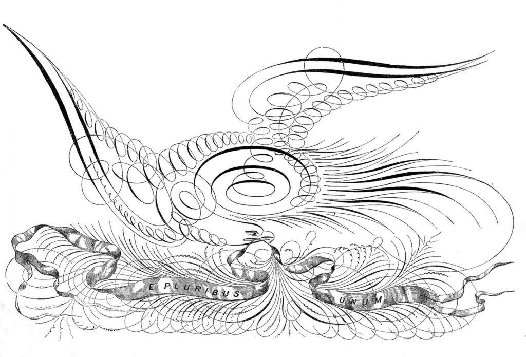 spencerian eagle calligraphy illustration