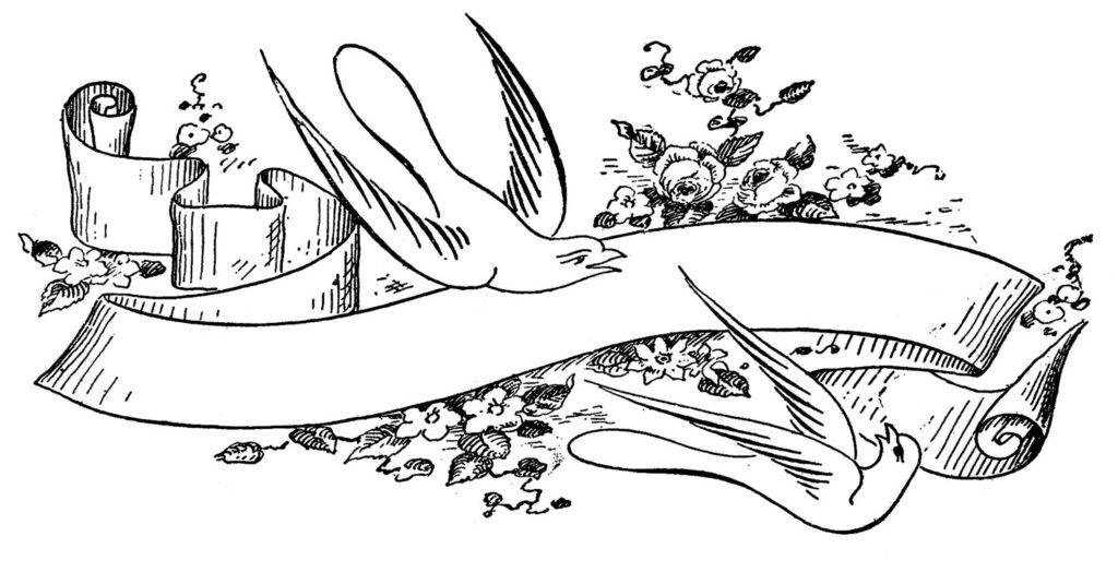 pen flourished bird ribbon image
