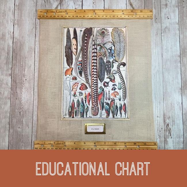 educational chart tutorial