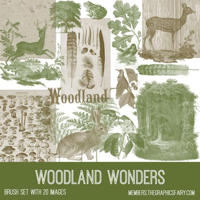 vintage woodland wonders ephemera brush set
