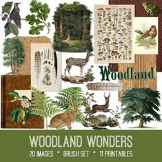 vintage woodland wonders ephemera bundle