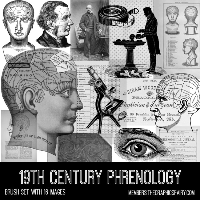 vintage 19th century phrenology ephemera brush set