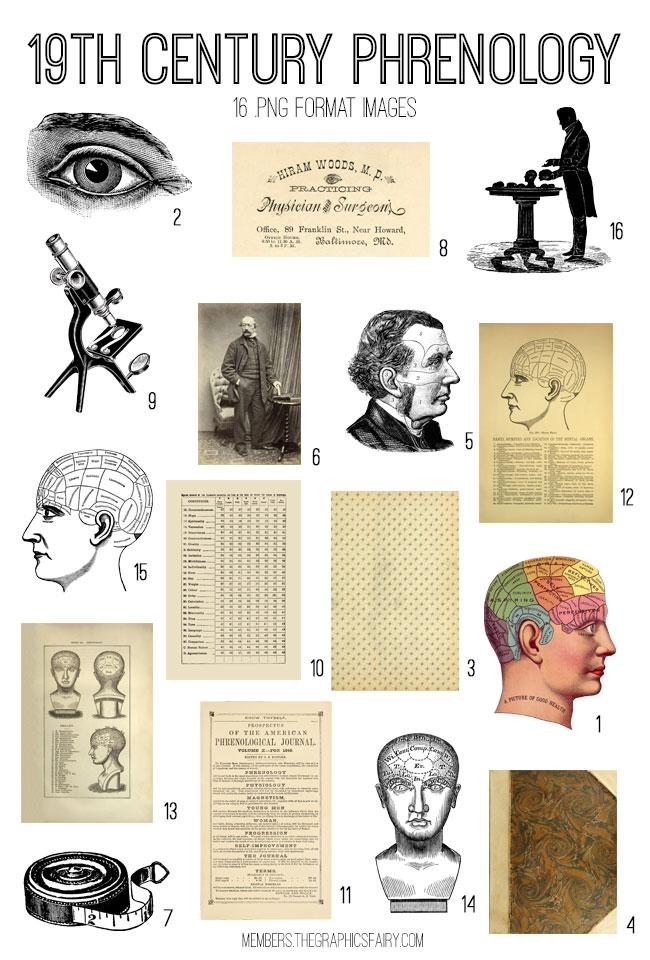 vintage 19th century phrenology ephemera digital image bundle