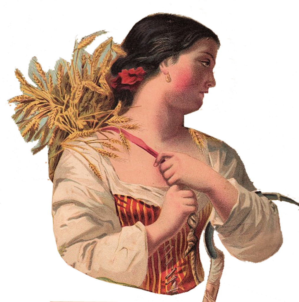 woman wheat sheaves image