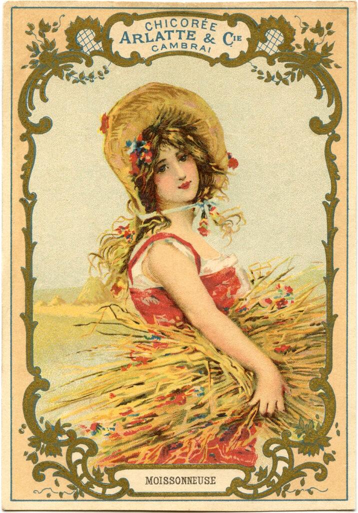 woman harvest sheaves wheat illustration