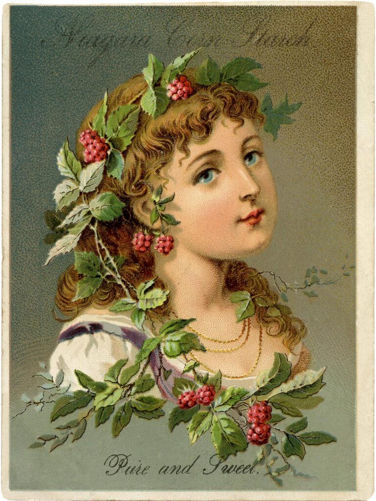 raspberry vine girl illustration