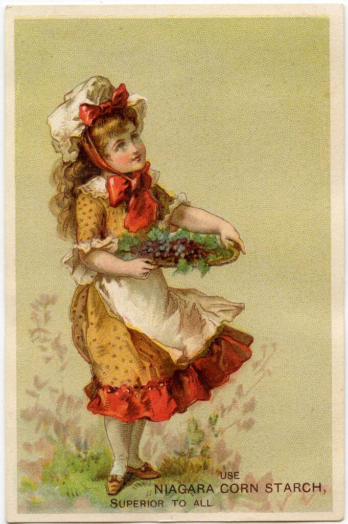vintage girl grape harvest image