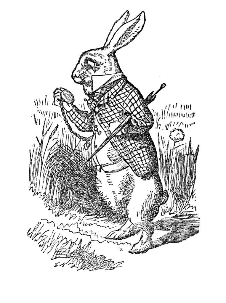 white rabbit alice wonderland vintage image