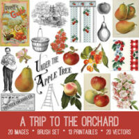 vintage A Trip to the Orchard ephemera bundle
