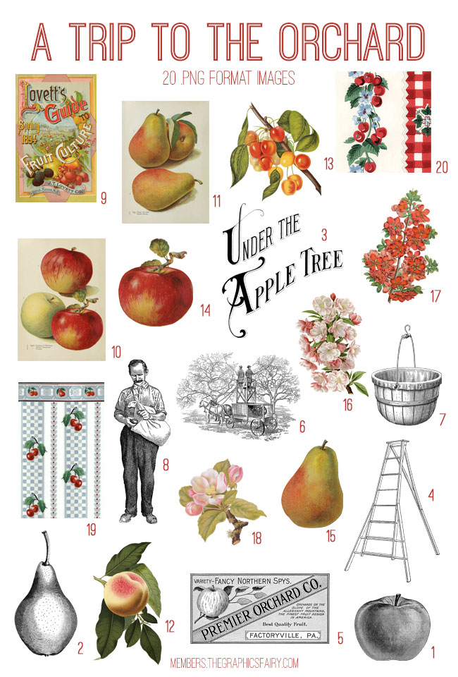 vintage a trip to the orchard ephemera digital image bundle