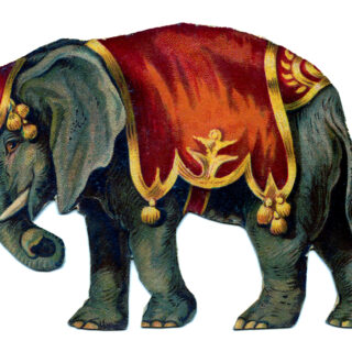 vintage circus elephant red costume image