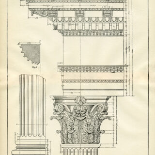 Corinthian Column Architecture Print image