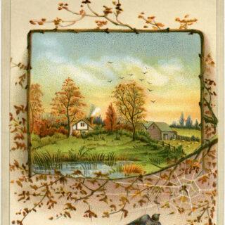 Autumn scene birds house pond image