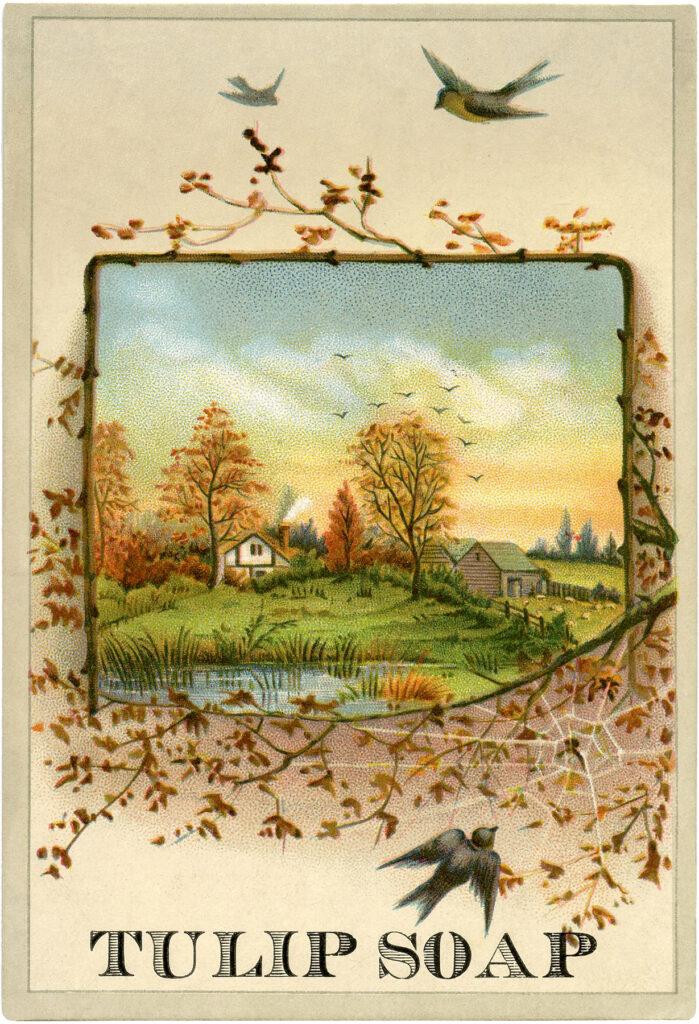 Autumn landscape scene with birds house pond image