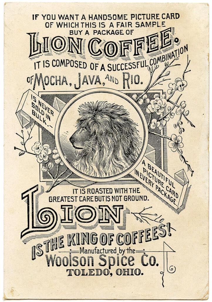 Lion coffee vintage ad typography illustration