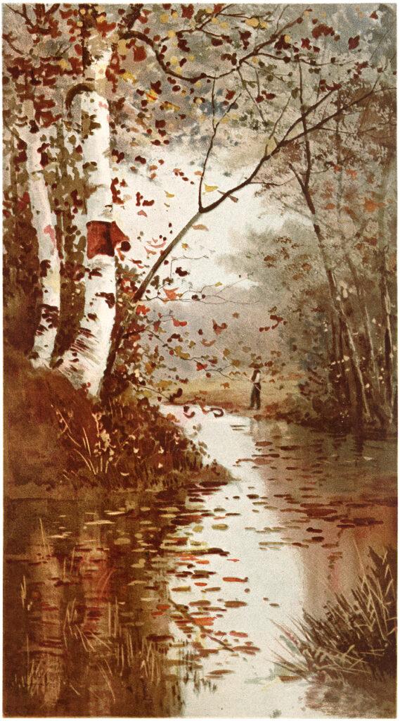Fall Landscape Image of creek river birch tree illustration