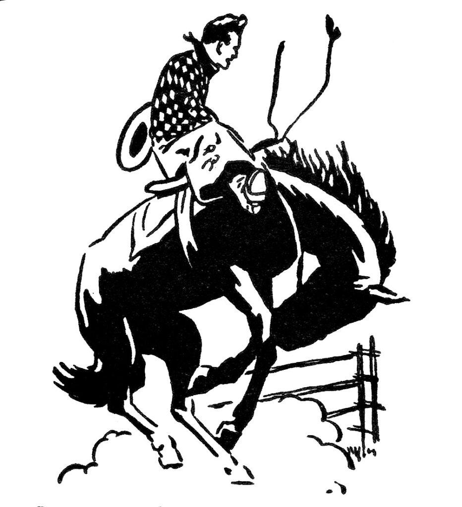 rodeo cowboy bucking horse lasso illustration