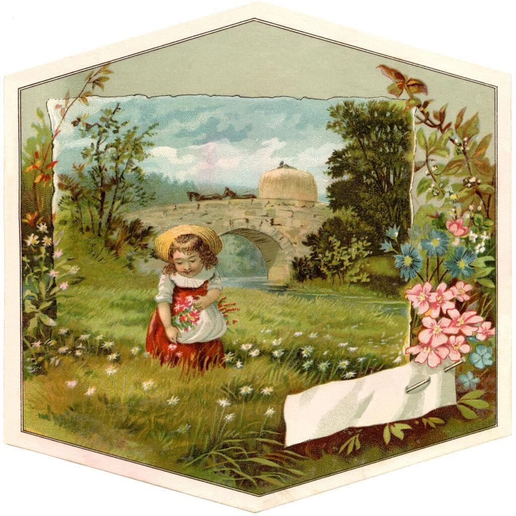 spring wildflower girl image
