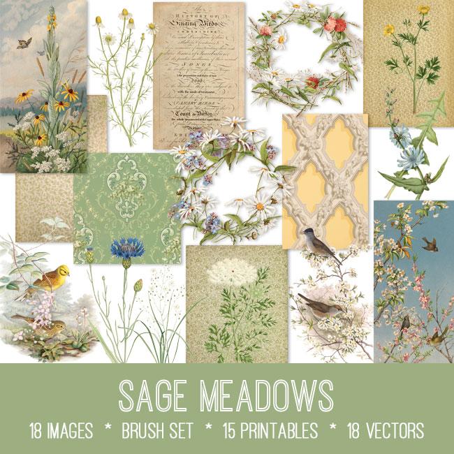 sage meadows ephemera vintage images