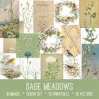 vintage sage meadows ephemera bundle