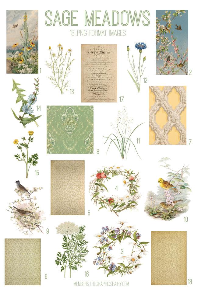 vintage sage meadows ephemera digital image bundle