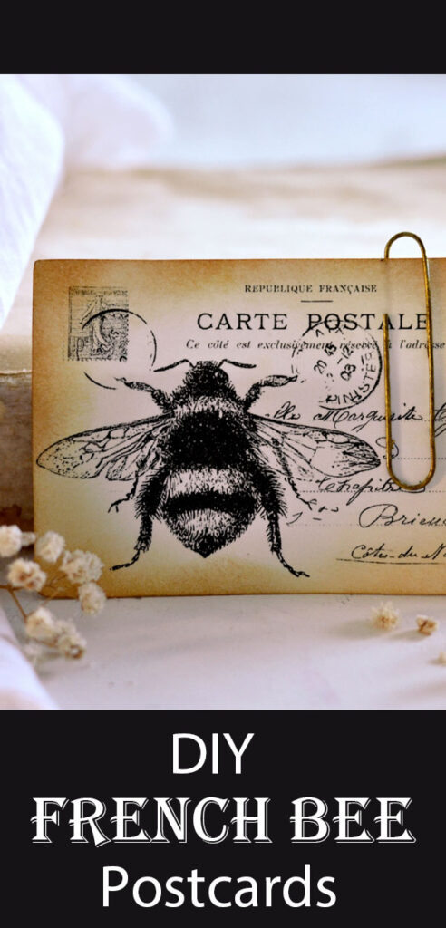 French Bee Postcards Pinterest Graphic
